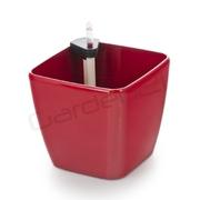 G21 Samozavlažovací květináč Cube červený 22cm