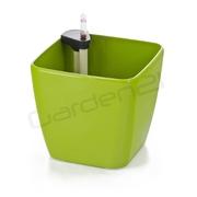G21 Samozavlažovací květináč Cube zelený 22cm