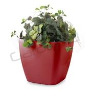 G21 Samozavlažovací květináč Cube maxi červený 45cm